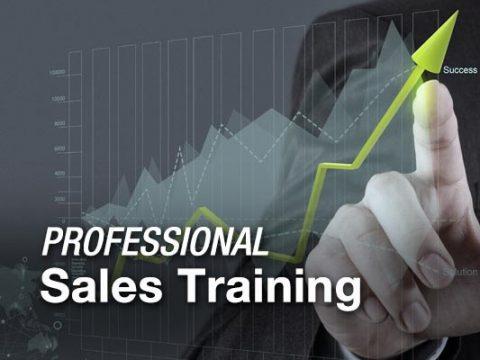 Professional Sales Coaching and Training Program