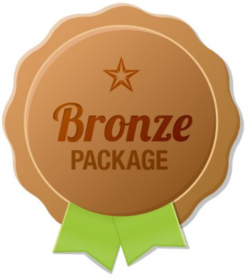 Bronze Online Sales & Business Training Package