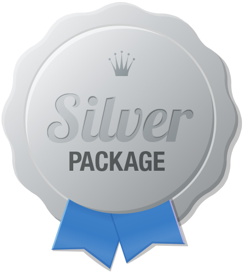 Silver Online Sales & Business Training Package